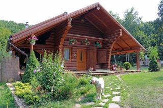 case din lemn rotund din Cluj